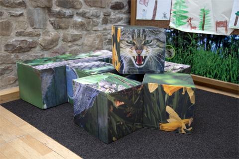 Würfelspiel für Kinder in der Ausstellung Wildnis(t)räume in Vogelsang